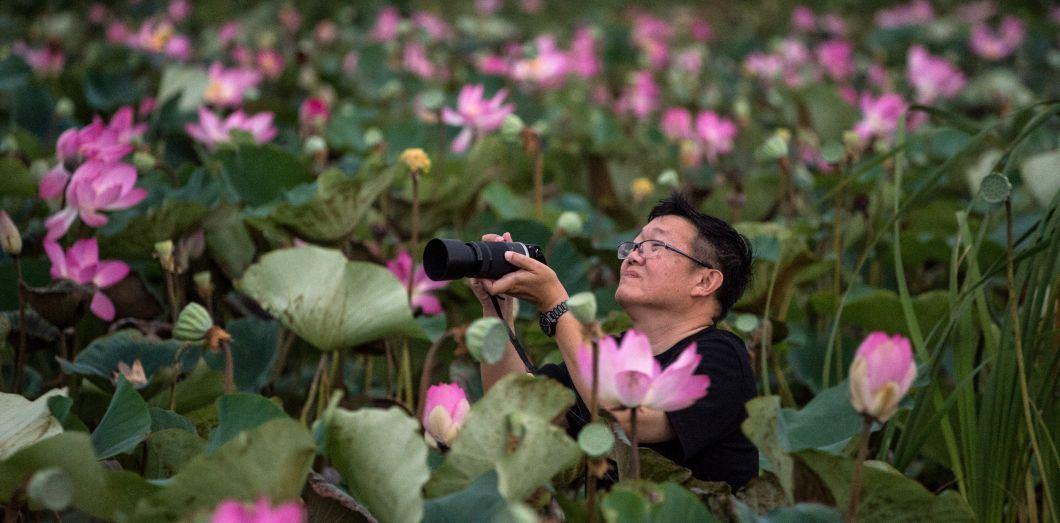 La Thaïlande explose le tourisme mondial (et son écosystème)