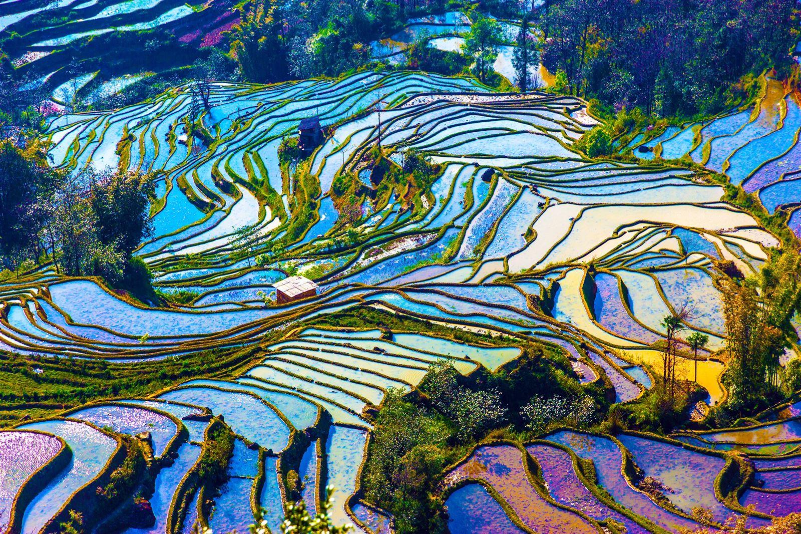 Photos Yunnan