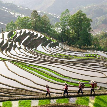 Le Yunnan au complet - étendu